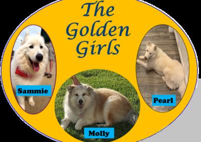 Golden Girls: August 2020