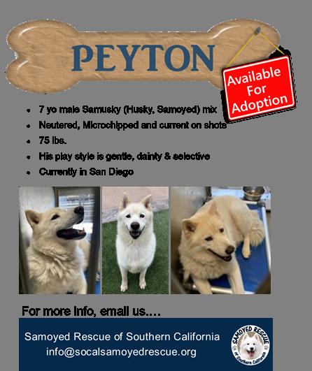 Peyton: 2021
